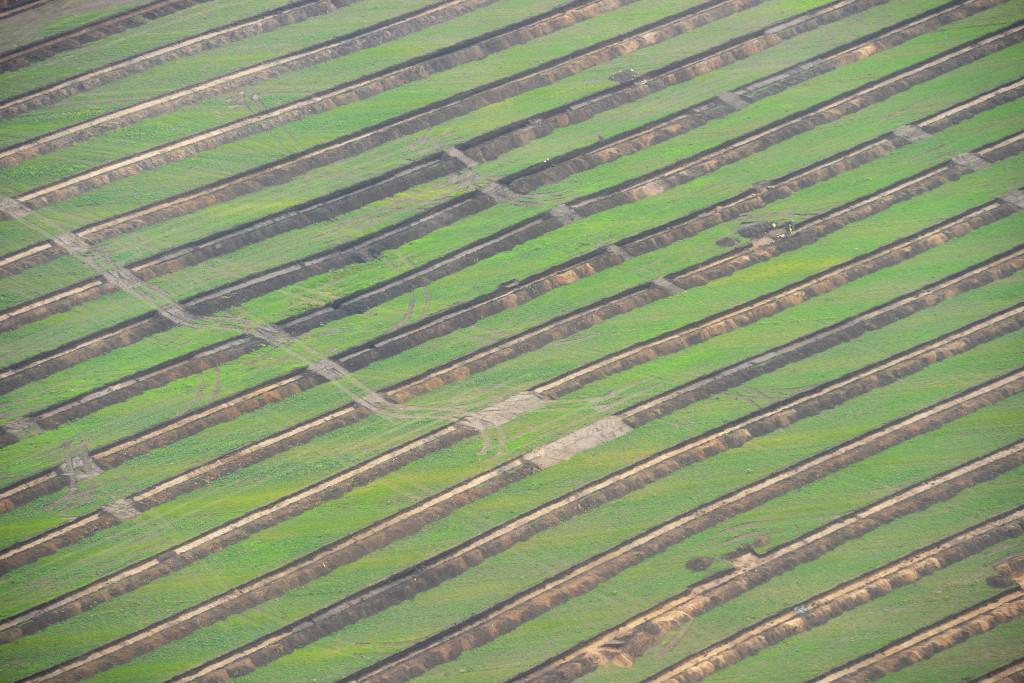 Arkæologiske udgravninger, søgegrøfter i Østfasen, oktober 2014